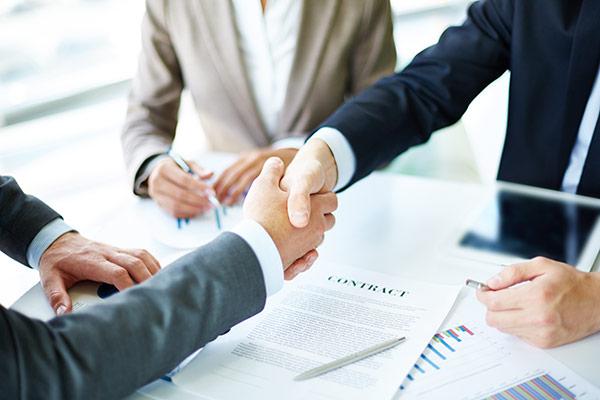 Double structure (SAP et marché professionnel)